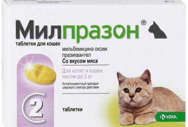Милпразон для котят и кошек весом до 2 кг 1 таблетка